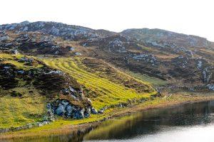 Potato Drills, Inishbofin, Co Galway, Ireland.