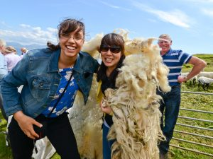 Co Mayo, Ireland, sheep sheering competition at the Patterm, 28th June, 2014, on Inishturk Island