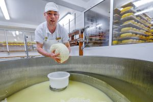Cheese making, Ailwee Caves, Ballyvaughan, County Clare, Ireland