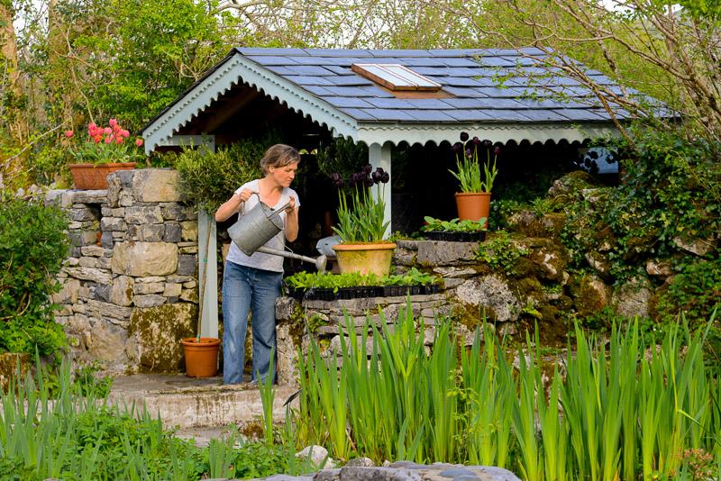 The Burren Perfumery (Sadie), Carran, The Burren, County Clare, Ireland.