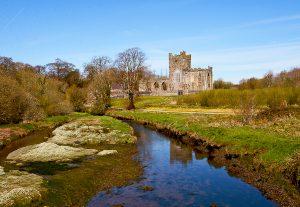 County Wexford, Ireland. &copy John Ironside