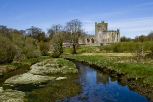 Tintern Abbey, Hook Peninsula, Co Wexford, Ireland. &copy John Ironside