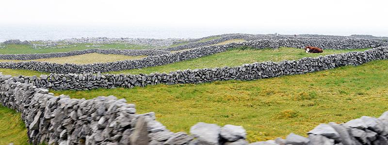 Inis Oirr (Inisheer), Aran Islands, County Clare, Ireland. © John Ironside