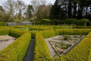 Potager designed box maize fruit and vegetable garden Kilmokea House and Garden, Campile, County Wexford, Ireland