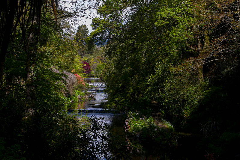 River Vartry and cascading Weirs, Mount Usher Garden, Ashford, County Wicklow, Ireland