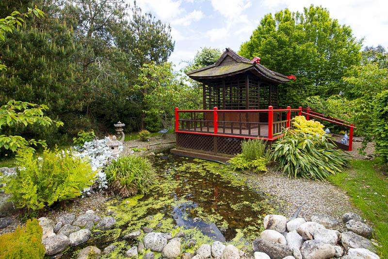Coy Pond and Tea House, Glenavon Japanese Garden, Glen Richards, Courtown Harbour, Gorey, Co. Wexford, Ireland.