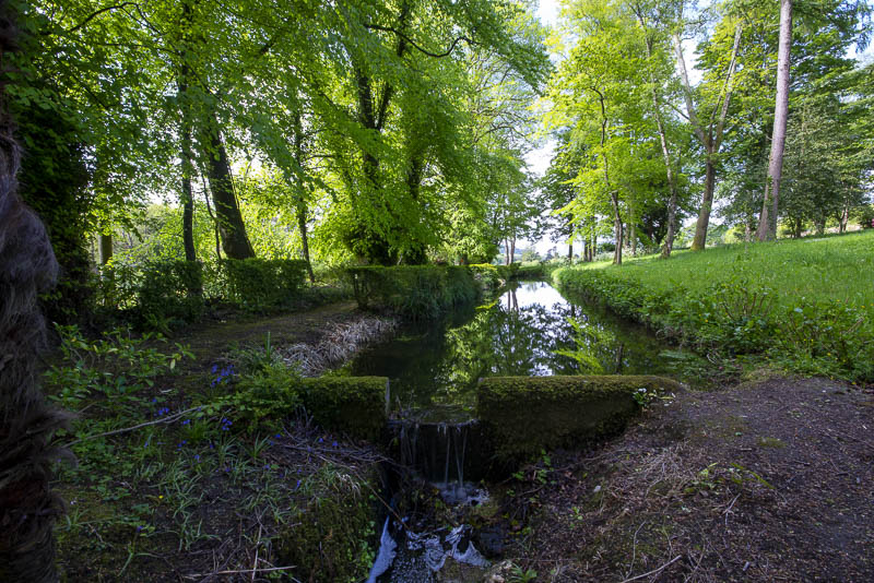 17th Century Carp or Stew Pond in Wilderness Woodland Garden, Huntington Castle and Garden, Clonegal, ounty Carlow, Ireland.