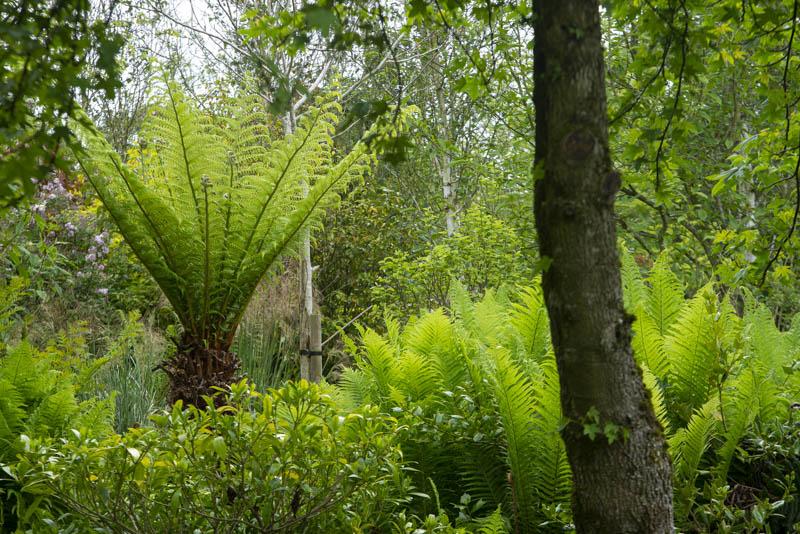 Coolaught Garden and Garden Center, Clonroch, Enniscorthy, County Wexford, Ireland